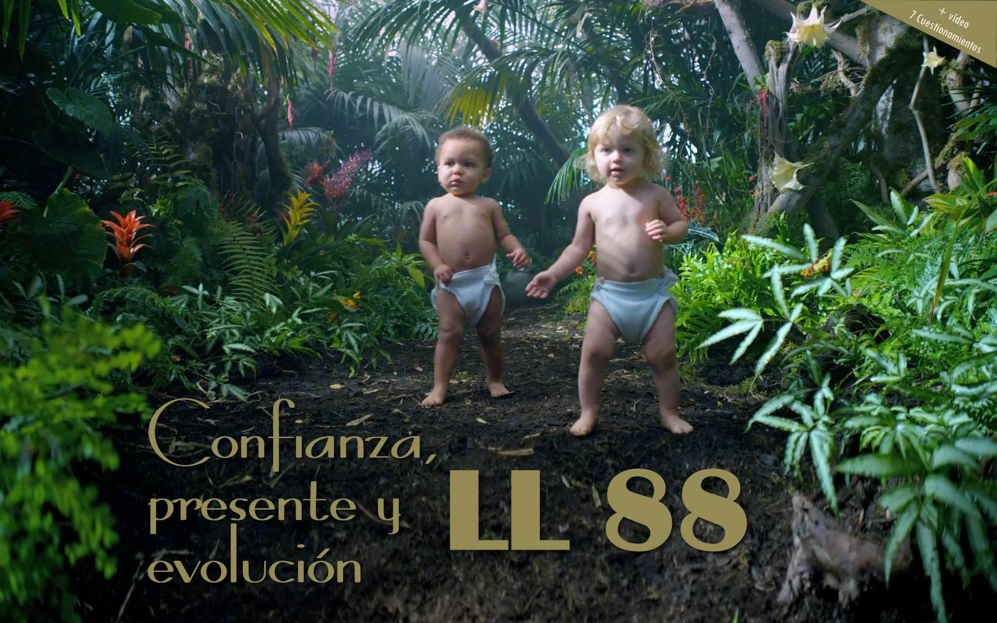 LL88_01